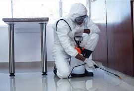 We Look For All Possible Errors In Your Building For Your Safety